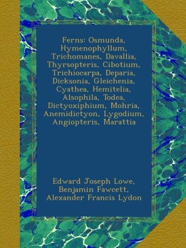 Ferns: Osmunda, Hymenophyllum, Trichomanes, Davallia, Thyrsopteris, Cibotium, Trichiocarpa, Deparia, Dicksonia, Gleichenia, Cyathea, Hemitelia, ... Anemidictyon, Lygodium, Angiopteris, Marattia