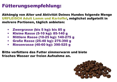 Dr. Berg URFLEISCH – Rezeptur für ausgewachsene Hunde – Lamm & Kartoffel (10 kg) - 3
