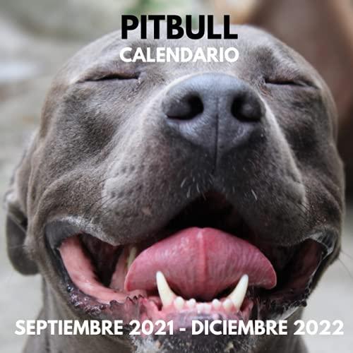 Calendario Pitbull Septiembre 2021 - Diciembre 2022: Cuadrado Libro de Fotos Planificador Mensual Calendario de regalo para los amantes del Pitbull I ... y mujeres I Con los días festivos de EE.UU.