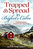 Trapped & Spread in Bigfoot's Cabin: Paranormal Monster Erotica