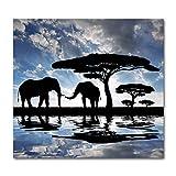 N / A Elefante Paisaje Pintura sobre Lienzo Impresión Animal Arte de la Pared Pared Sala de Estar Decoración Imagen Obra sin Marco 60x60cm