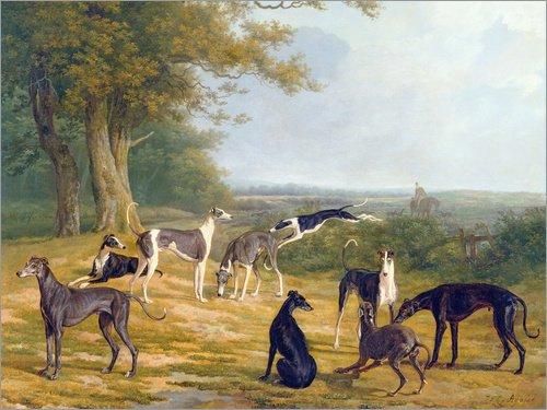 Lienzo 40 x 30 cm: Nine Greyhounds on a landscape de Jacques Laurent Agasse / Bridgeman Images - cuadro terminado, cuadro sobre bastidor, lámina terminada sobre lienzo auténtico, impresión en lienz...