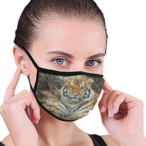 Cubierta De Boca A Prueba De Polvo Lavable Reutilizable Hipster Tigre
