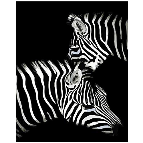 Wxswz schilderen op cijfers voor volwassenen DIY een paar knuffelende zebra's dier canvas decoratie kunst afbeelding kindergeschenk 40x50cm zonder lijst