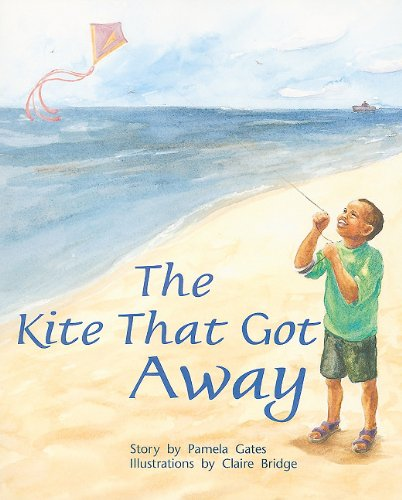Rigby PM Plus: Individual Student Edition Orange (Levels 15-16) the Kite That Got Away