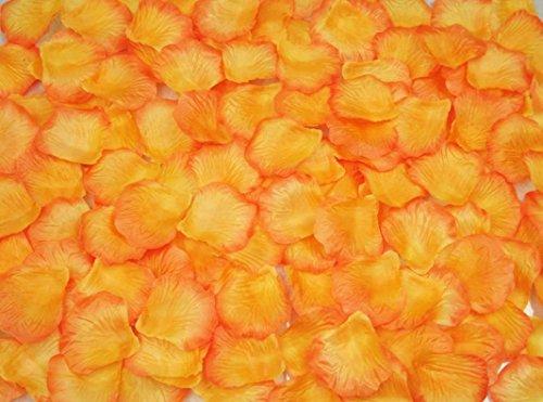 October Elf 1000pcs Petali di Rosa Petali di Fiori di Seta Rose Artificiali Fiore Decorazione di Fiori da Sposa (Arancione + Bordo Rosso)