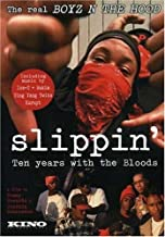Slippin: Ten Years with the Bloods