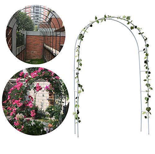 HI SUYI Jardín Decko Rosario Arco Flores Winepflanzen Torbogen Rankhilfe Kletterpflanzen Puerta