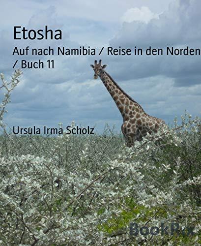 Etosha: Auf nach Namibia / Reise in den Norden / Buch 11