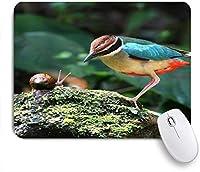 EILANNAマウスパッド カラフルな鳥とカタツムリの自然動物 ゲーミング オフィス最適 高級感 おしゃれ 防水 耐久性が良い 滑り止めゴム底 ゲーミングなど適用 用ノートブックコンピュータマウスマット