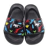 Boys Girls Slide Sandals Kids Outdoor Beach Pool Sandal Soft Unicorn Bath Slippers (Toddler/Little Kid)dinoS