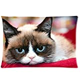 anfGreenqb Cute Grumpy Cat-Custom Pillowcase 20'x30' Two Sides Pillow Case