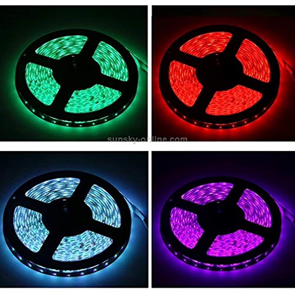 LED String Lights, Epoxy Waterproof Rope Light, Length: 5m, RGB Light 5050 SMD LED with Remote Controller, Flashing/Fading, 54 LED/m, 12V 5A