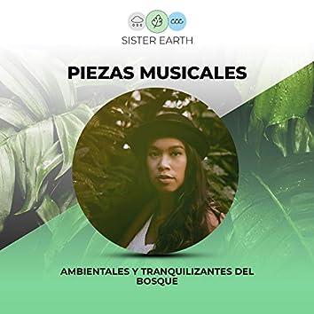 Piezas Musicales Ambientales y Tranquilizantes del Bosque