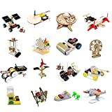Changor Kit Giocattolo educativo, esperimento Intelligence Education Modeling Objects Wooden Made