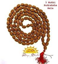 Divya Shakti 3 Mukhi (Three Face) Rudraksha Mala in 108+1 Beads (6 M.M) Lab-Certified