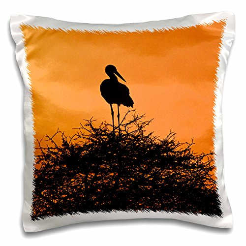 Danita Delimont - Birds - White Stork, Bird, Tanzania Africa - NA02 DNO0163 - David Northcott - 16x16 inch Pillow Case (pc_83829_1)