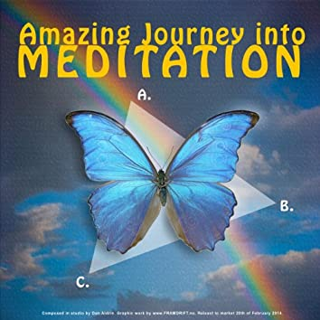 Amazing Journey Into Meditation