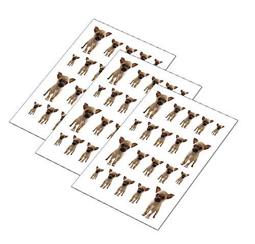 AWS Set da 60 Water decals Cane Chiwawa unghie nail art Chihuahua Adesivi stickers Sessanta pezzi Chiuaua transfer decorazione french little dog