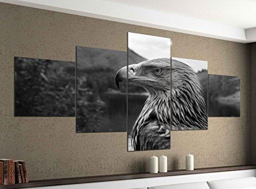 Leinwandbild 5 tlg. 200cmx100cm Adler Portrait Vogel Raubvogel schwarz weiß Bilder Druck auf Leinwand Bild Kunstdruck mehrteilig Holz 9YA1227, 5Tlg 200x100cm:5Tlg 200x100cm