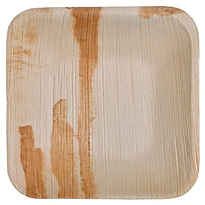Green Atmos Flat Square Palm Leaf Plate -100 PCS (Biodegradable/ECO-Friendly/Disposable)