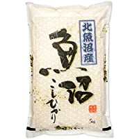 新潟県産 北魚沼産コシヒカリ 白米 5kg 令和元年産