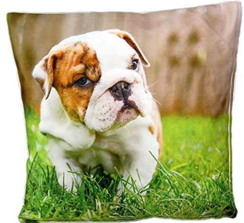Kissenhüllen 40x40 cm Dekokissen Kissenbezug Fotokissen Kissen Hüllen Bezug Bezüge Hunde Dog (Hund #1045)