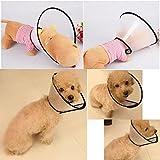 Zoom IMG-1 ueetek cane gatto collare protettivo
