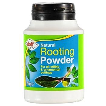 Favorise la pousse de racines saines et robustes. Hormone de bouturage en poudre simple à utiliser. Utilisable pour des plantes herbacées, semi-ligneuses et ligneuses. Favorise la formation de nouvelles racines sur les boutures, utilisable toute l'an...
