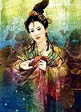 hetingyue DIY Pintar por números Señora del Arte Chino Antiguo DIY Digital Lienzo Pintura al óleo Regalo para Adultos Niños Pintura por Numero Kits Decoración del Hogar Caja Combo 30x40cm
