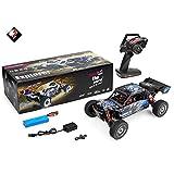 MODELTRONIC Coche RC Profesional Buggy Rally Wltoys XKS 124018 tracción 4X4 Emisora 2.4Ghz Escala 1:12 Alta Velocidad de 60km/h con Motor 550