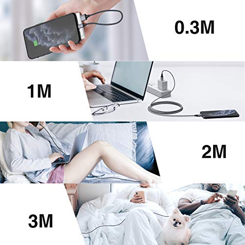 RAVIAD iPhone Ladekabel, Lightning Kabel [4Pack 0.3M 1M 2M 3M] Nylon iPhone Kabel USB Ladekabel für iPhone 11, XS, XS Max, XR, X, 8, 8 Plus, 7, 7 Plus, 6s, 6s Plus, 6, 6 Plus, 5s, 5c, SE 2020 - Grau