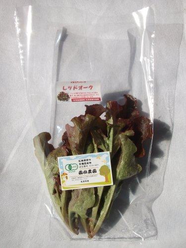 九州佐賀県産 サガンベジJAS有機栽培リーフレタス系 レットオーク100g