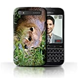 Hülle Für BlackBerry Classic/Q20 Süß Baby Tier Fotos