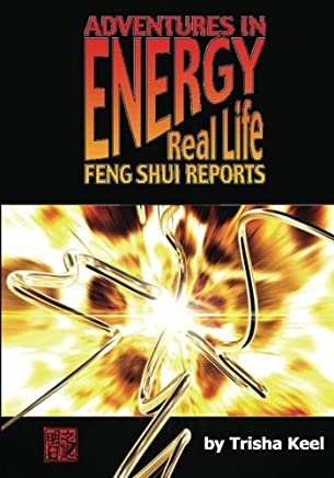 Adventures in Energy: Real Life Feng Shui Reports