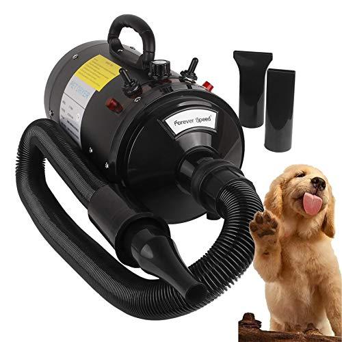 Forever Speed Hundefön Pet Dryer 2400W für Hundepflege Tierfön mit Einstellbarer Windgeschwindigkeit, Hundetrockner mit 3 Düsen