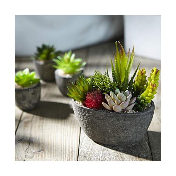 Jobary 5pcs Plantas Suculentas Artificiales Falso Plantas Decorativas Suculentas,Ideal para el Hogar, Oficina y…