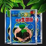 Zoom IMG-2 ferry bonsai plant rapid growth