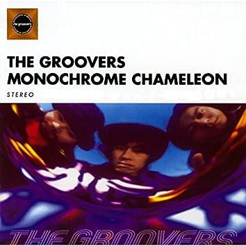 Monochrome Chameleon