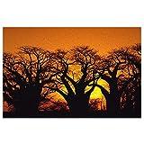 DLJIYZX Felpudo Botswana Alfombrillas de Entrada Alfombra...