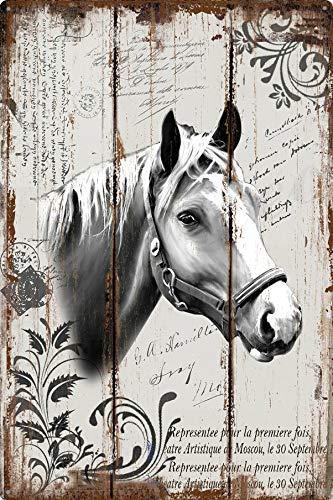 Mulrcks Placa de hierro de caballo adhesivo de pared para decoración del hogar, casa, oficina, garaje, letrero de lata de 20 x 30 cm