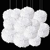 Aimto 12pcs White Paper Pom Poms Decorations for Party Ceiling Wall Hanging Tissue Flowers Decorations - 1 Color of 12 Inch, 10 Inch