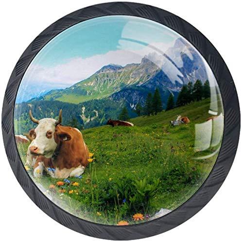 Cow Landscape Mountains Nature [4 Stuck] Küchenknöpfe - Türknopf Knauf für Schrank, Schubladenknopf, Türknäufe, Möbelknopf