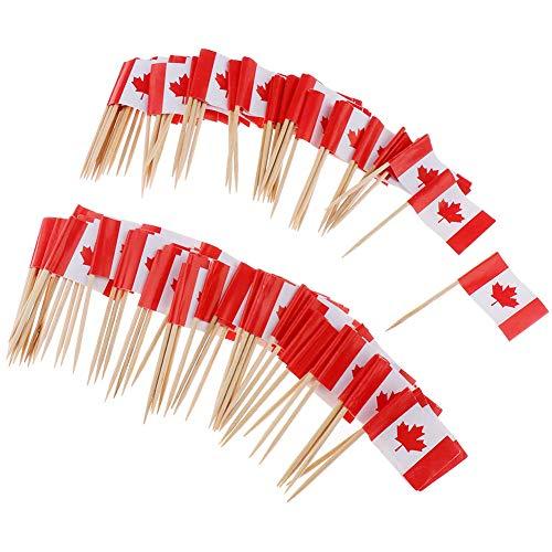 Xiton 100Pcs Mini Flag Zahnstocher Kanada-Flaggen-Kuchen Auswahl Internationale Events Cocktail-Stock-Flagge Obst Lebensmittel Auswahl