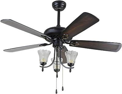 Amazon.com: RainierLight - Lámpara de techo rústica con 3 ...
