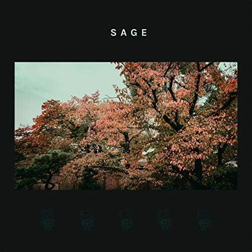 Seventh Sage