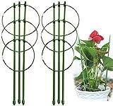 Anzmtos Upgrade - Anello di supporto per piante da giardino, in acciaio inox, con 3 anelli regolabili da 45 cm (2 pezzi)