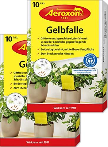 Aeroxon – Gelbfalle, Gelbtafeln, 40 kleine Gelbsticker, 20 große teilbare Leimtafeln, perfekt bei Ungeziefer, Zuhause und auf dem Balkon, Für Trauermücken, Blattläuse, Thripse, weiße Fliegen