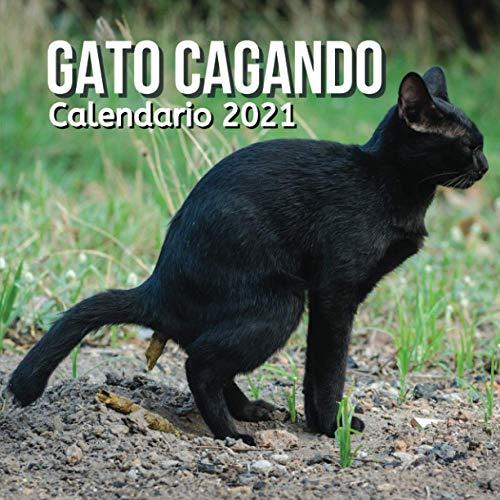 Gatos Cagando Calendario 2021: Regalos Para Amantes De Los Gatos | Divertidos Para Mujer, Hombre, Niños, Niñas, Amigas, Amigos, Cumpleaños, Navidad