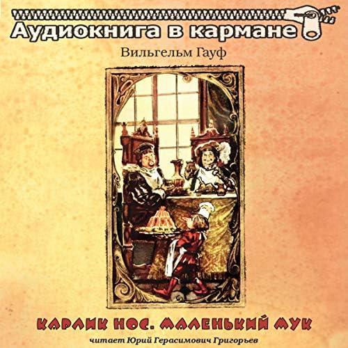 Аудиокнига в кармане & Юрий Григорьев